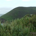 Ireland - Ring of Kerry Nature
