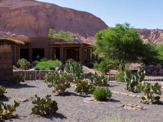 Hotel - Alto Atacama Desert Lodge & Spa