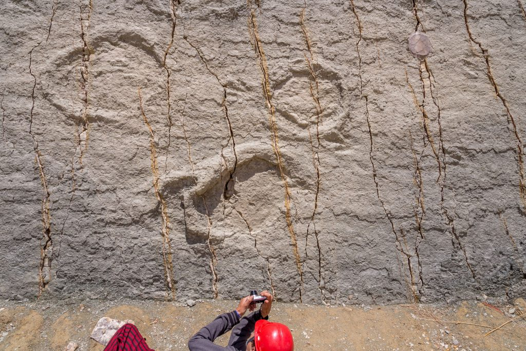 Dino footprints Cal Orck'o - BOLIVIA - Amazing 10-day Bolivia itinerary to Sucre & the Altiplano