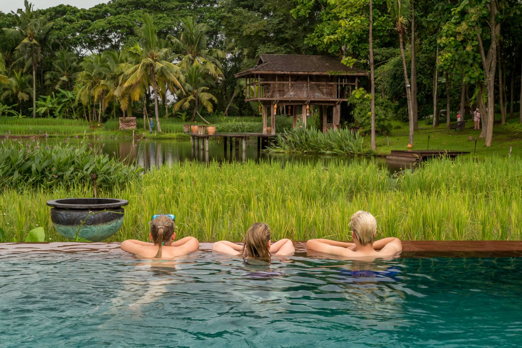 Enjoying the pool view - THAILAND - Four Seasons Chiang Mai: A luxury treasure in the Mae Rim Valley