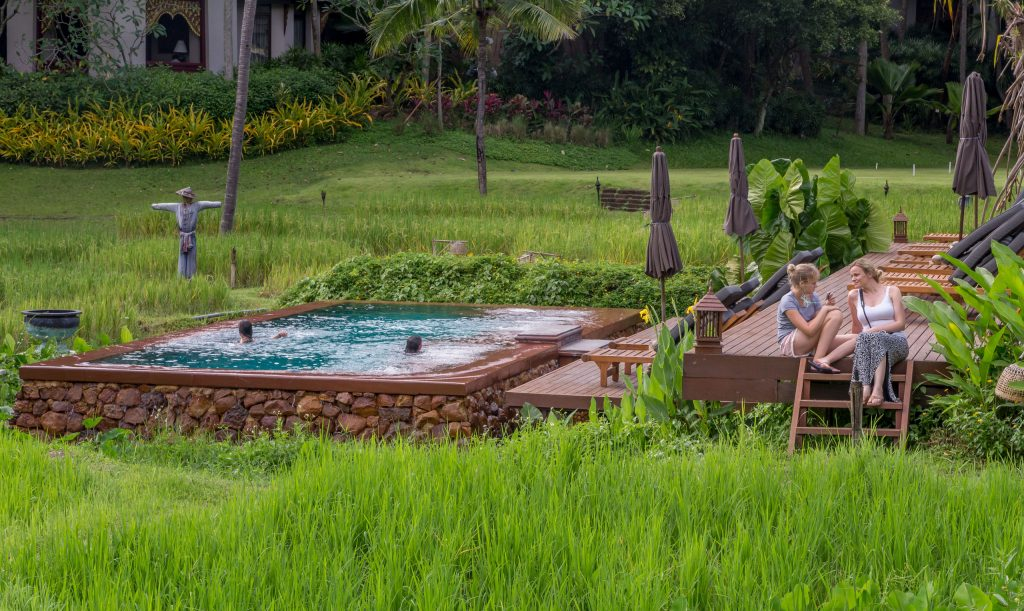 Swimming pool in rice fields - THAILAND - Four Seasons Chiang Mai: A luxury treasure in the Mae Rim Valley
