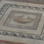 Malta - Mdina - Old Roman Villa