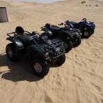 Abu Dhabi - Dune Bashing