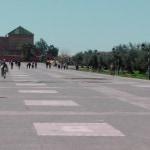 Marrakesh - Menara Gardens
