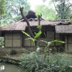 China - Chengdu - Du Fu Thatched Cottage