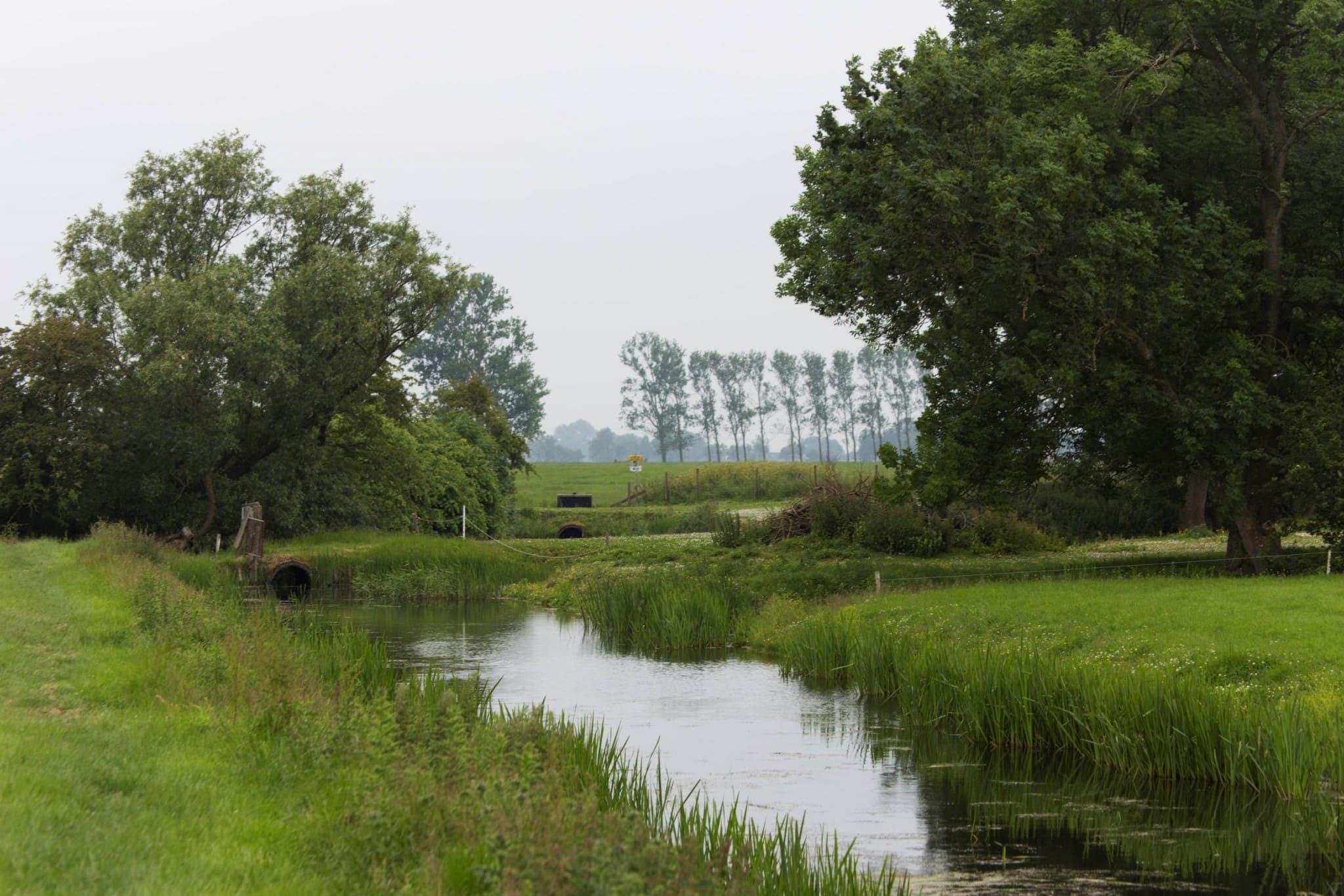 Beautiful nature at Lauwersmeer & the Pieterpad walking trail
