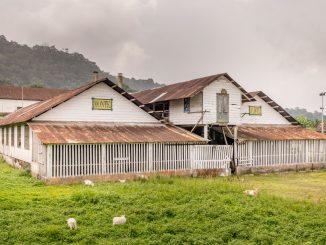 SÃO TOMÉ & PRÍNCIPE - Central São Tomé day trip; culture & nature on paradise island